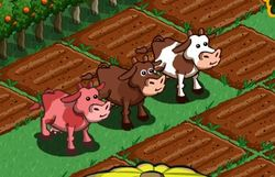Pink-cow-at-farmville